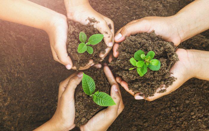 Children planting together in soil