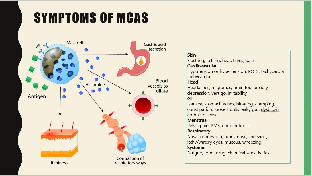 Symptoms of mast cell activation syndrome (MCAS)